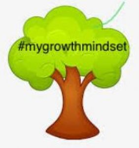 my growth mindset