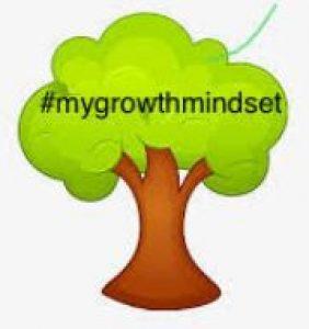 my growth mindset